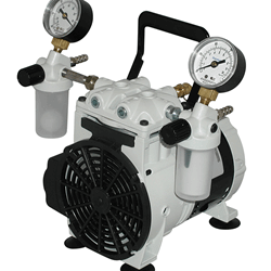 Winterization/ Filtration Pumps
